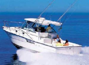 boat1-300x220